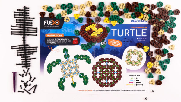 Turtle Set Instructions and Contents