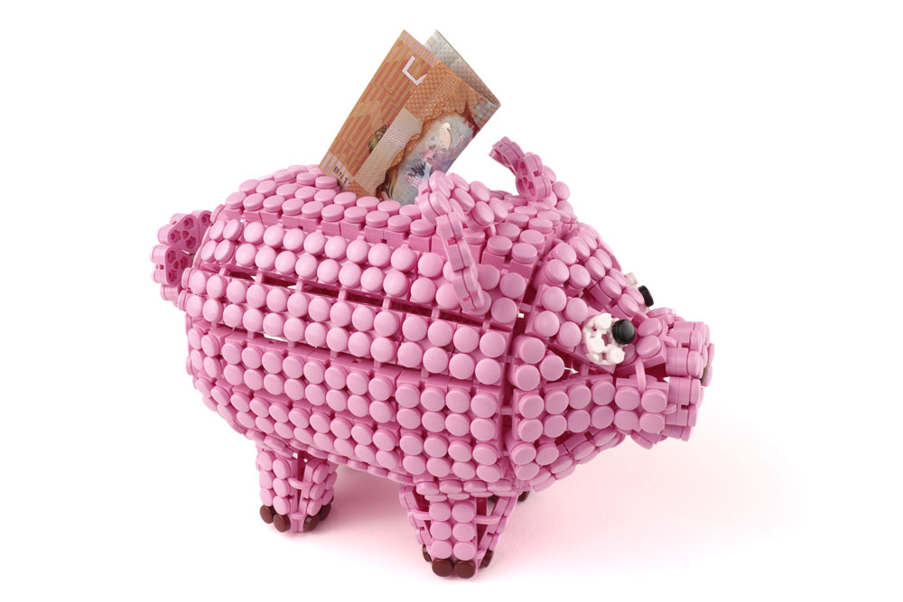 Flexo Piggy-Bank
